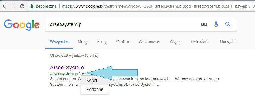 Kopia strony Google